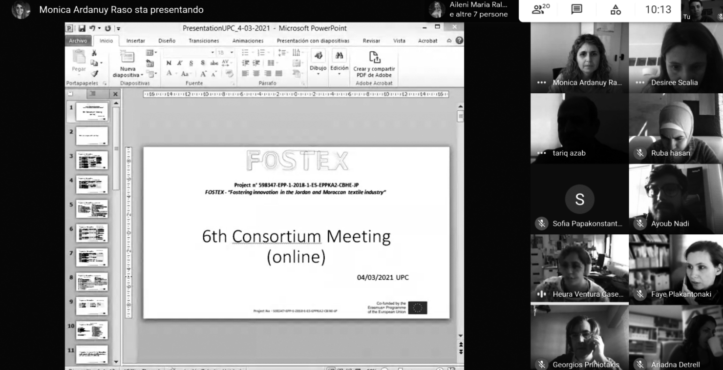 """Sixth Fostex consortium meeting: making the best out of the """"new normal"""""""
